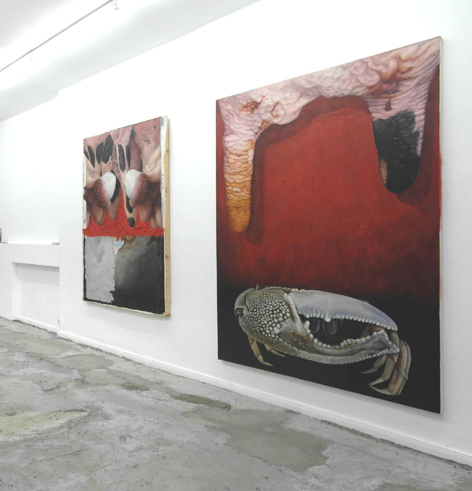 Installationsansicht, Laura Link, 7tueren Galerie, Gut Vom Verhalten her, 2016